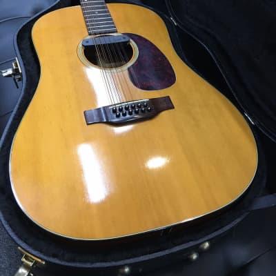 Vintage Martin 1970 D12-20 acoustic guitar w/ fishman installed + hardcase for sale
