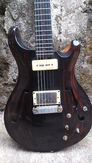 Interesting. Macassar ebony guitar