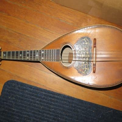Vintage 1890  american conservatory mandolin for sale