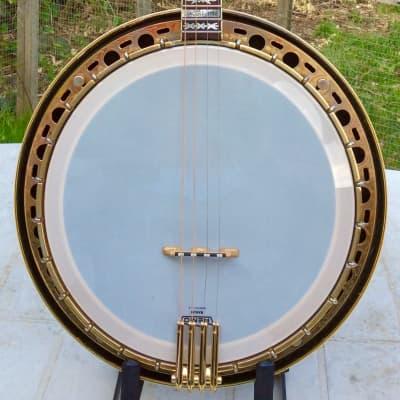 Fender Concert Tone Tenor Banjo for sale