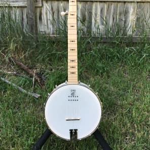 Deering Goodtime 5-String Openback Acoustic/Electric Banjo