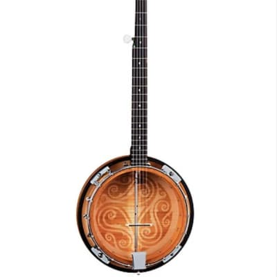 Luna Celtic 5 String Banjo includes case for sale