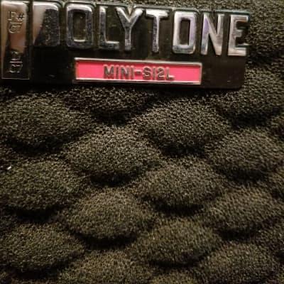Polytone  Mini-S12L F#/C7, D/C7 Amp for sale