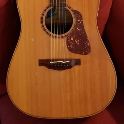 Palmer LW20 Acoustic Guitar for sale