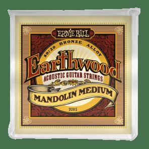 Ernie Ball 2065 Earthwood 80/20 Bronze Medium Mandolin Strings w/ Loop End (10-36)