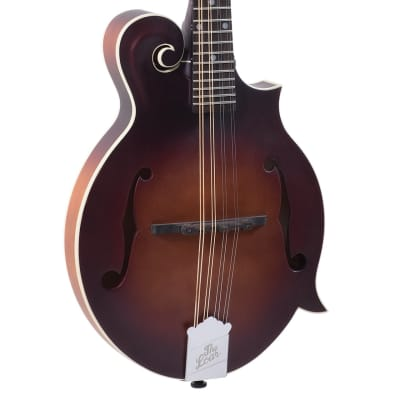 Loar F-Body Solid Top Mandolin LM-310FE-BRB, Fishman Pickup, Free Shipping for sale