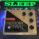 Electro-Harmonix Deluxe Memory Man  1990's Panasonic MN3005