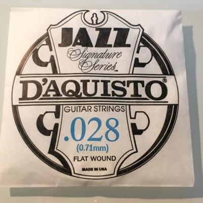 "D'Aquisto RARE Jazz Signature Series String .028"" Flatwound"