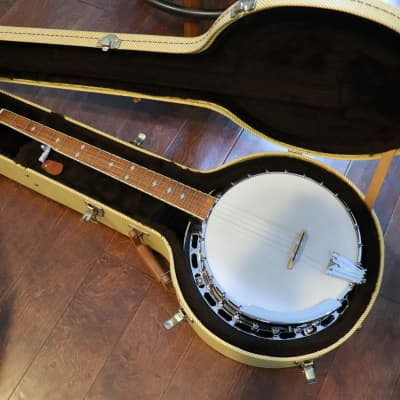 Gold Tone Bluegrass Banjo BG250F Solid Tone Ring