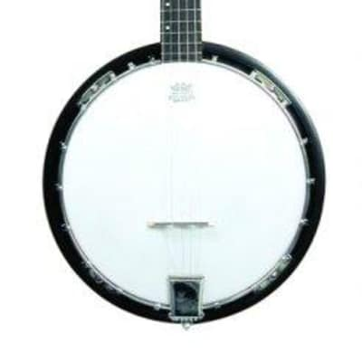 Trinity River PRB75 Drifter 3/4 Size 5-String Banjo with Deluxe Padded Carrying Bag for sale
