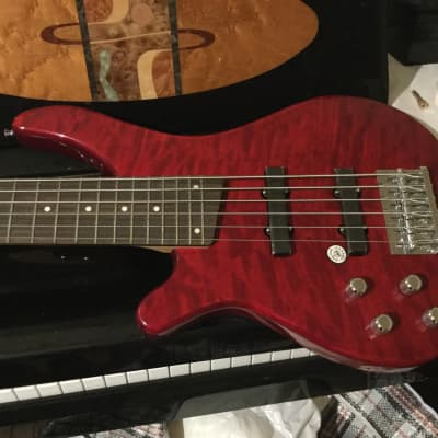 Davison 6 String  200 Series Lefty Mahogany Red *Left Handed* for sale