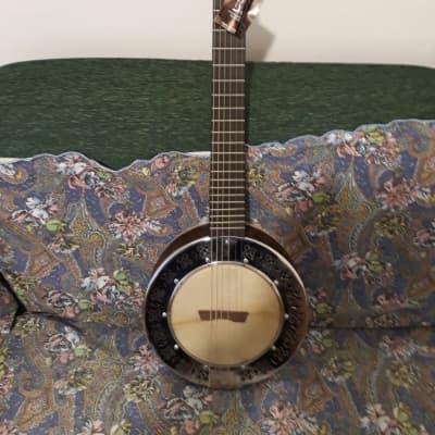 Chitarra Banjo APC  BJGTC300 PSI for sale