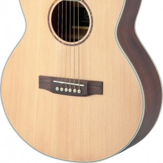 James Neligan Asyla Series Mini Auditorium Travel Guitar w/ Solid Spruce Top, Lefthanded image
