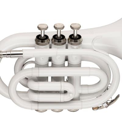 Stagg Brass Pocket Trumpet in Bb w/ Case - White