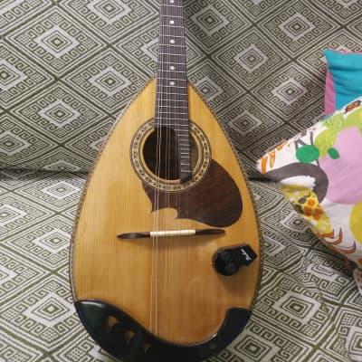 Suzuki M-210 1970s natural Vintage Solid Bow Mandolin for sale
