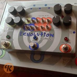 Pigtronix Echolution