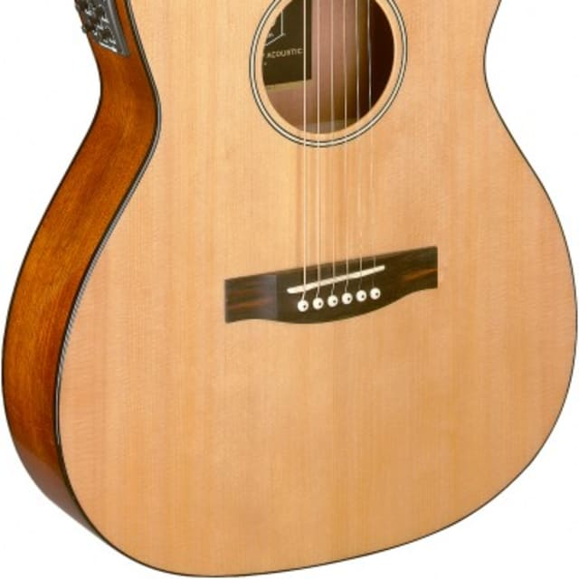 James Neligan BES-ACE N Bessie Series Acoustic-Electric Auditorium, Solid Spruce Top, Natural image