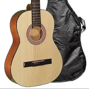 Indiana COLT Standard Size Steel String 36-Inch  Acoustic Guitar w/Gig Bag for sale