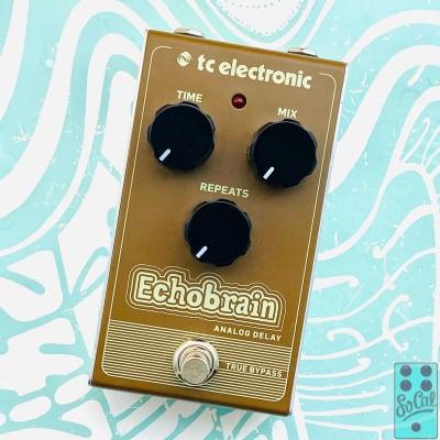 TC Electronic Echobrain Analog Delay Pedal w/Original Box!