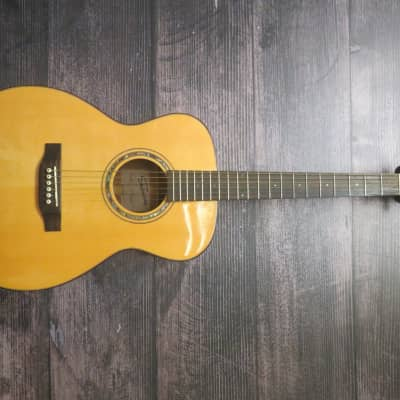 Shaftesbury 3170 acustic guitar with hard-shell case for sale
