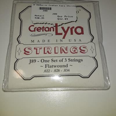 D'Addario EJ89 Cretan Lyra String Set - Flat Wound