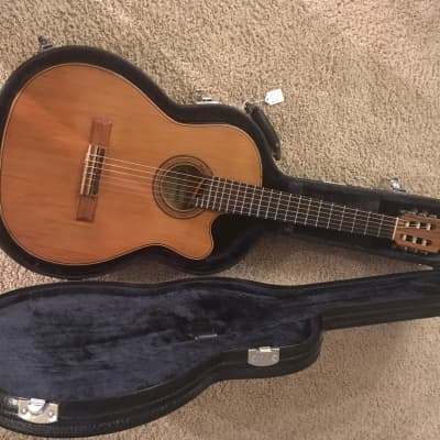 Giannini Hand Made Guitar 1994 Made In Brazil  GWNFLE Flat Series Professional 1994 Natural for sale