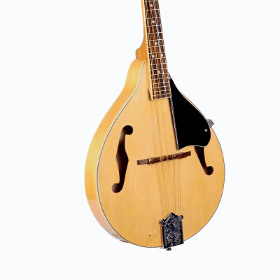 Glen Burton MDL-A1-NT A-Style Mandolin w/Gig Bag - Natural for sale