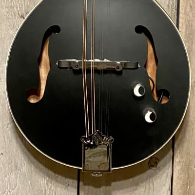 Luna BGM MOON A Moonbird A-Style Mandolin with Electronics, Excellent, You want it Fast Buy it Here for sale