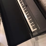 Roland RD-300S  Keyboard Black with 100 watt amp, padded road case and stand