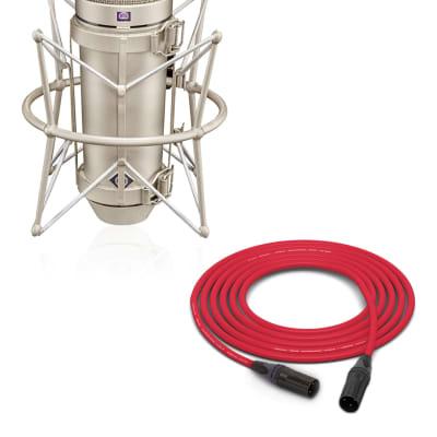 Neumann U 67 Set | Tube Microphone Set