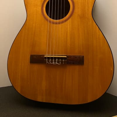 Goya G-10 Concert Size Classical Guitar with Case - 1968 for sale