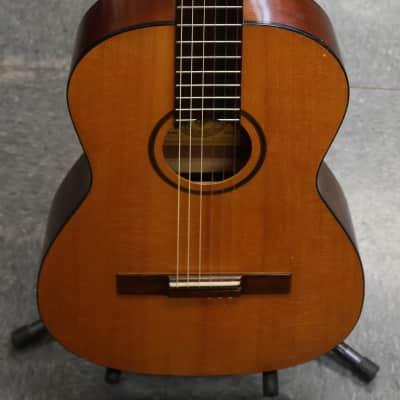 Favilla C-6 Concerto for sale