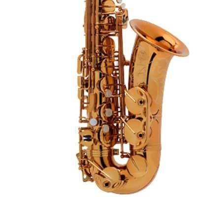Selmer Paris Reference 54 Alto Saxophone Outfit
