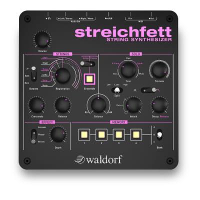 Waldorf Streichfett - String Synthesizer / Authorized Dealer
