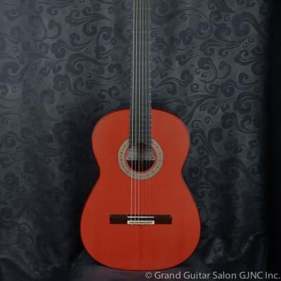 Graciliano Perez Flamenco Negra Guitar 2019 for sale