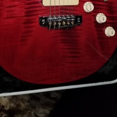 Warmoth  Super Flame PRS Style  2017?