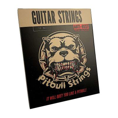 Premium Acoustic Guitar Strings 12-53 Pitbull Strings Gold Series  - GAG-L