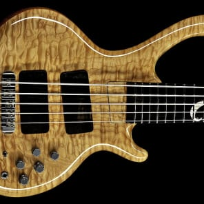 Ritter Roya 5-String Bass - Quilted Maple Top - Wynn Inlay (Solid Silver) - See Video for sale