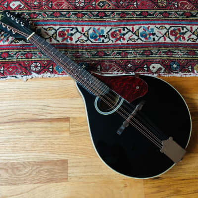 J. Reynolds JRMAN 30 A-Style Mandolin for sale
