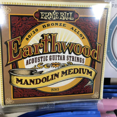 Ernie Ball 2065 Earthwood 80/20 Bronze Medium Mandolin Strings w/ Loop End (10-36)