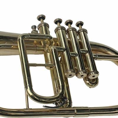 sai musicals fl-22 Flugel Horn Brass Plated, 4 Valve Bb 2019