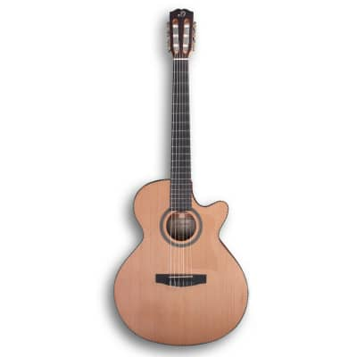 Dowina Rustica CLEC Hybryd Electro-Acoustic Guitar + Bag for sale