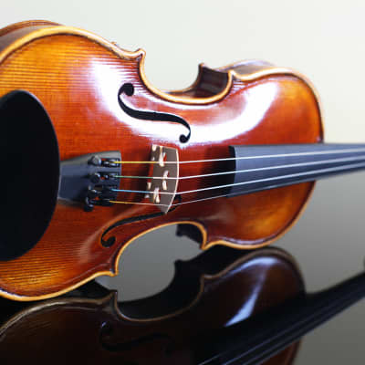 Plum Grove Violin 3/4