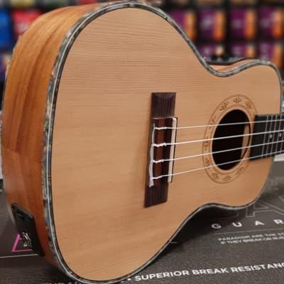 Freshman UKSPRUCE Electro Acoustic Concert Ukulele Natural for sale