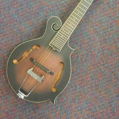 Gold Tone Mando Guitar Model F-6 Plays like Guitar-New with Case and Shop Setup!