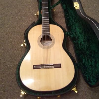 Hippner Gerundino Flamenco Negra  2013 for sale