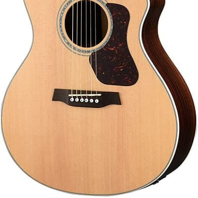 Walden G800CE Natura All-Solid Sitka/Rosewood Grand Auditorium Acoustic Cutaway-Electric Guitar - Satin Natural for sale