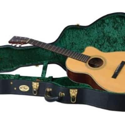 "Recording King Vintage Hardshell ""000"" Guitar Case. Brand New!"