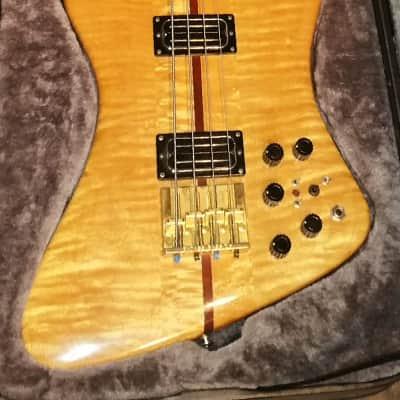 Ribbecke  Bass 1982 Vintage Custom Thunderbird Bass Very Very Rare 1 of 4 for sale
