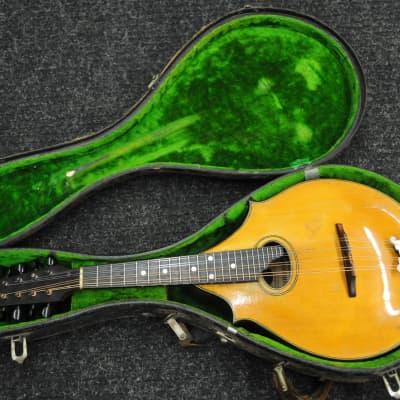 Washburn/Lyon & Healy 2218 1920s 2 Point Style Mandolin for sale
